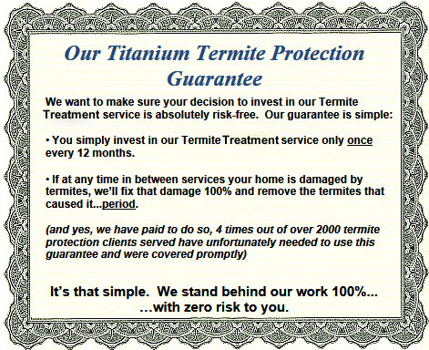 Termite Protection Haynes Exterminating